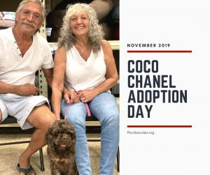 Coco Chanel Adopt