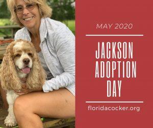 Jackson Adopt