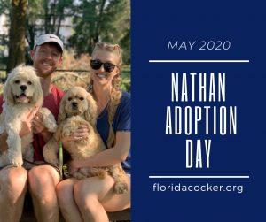 Nathan Adopt