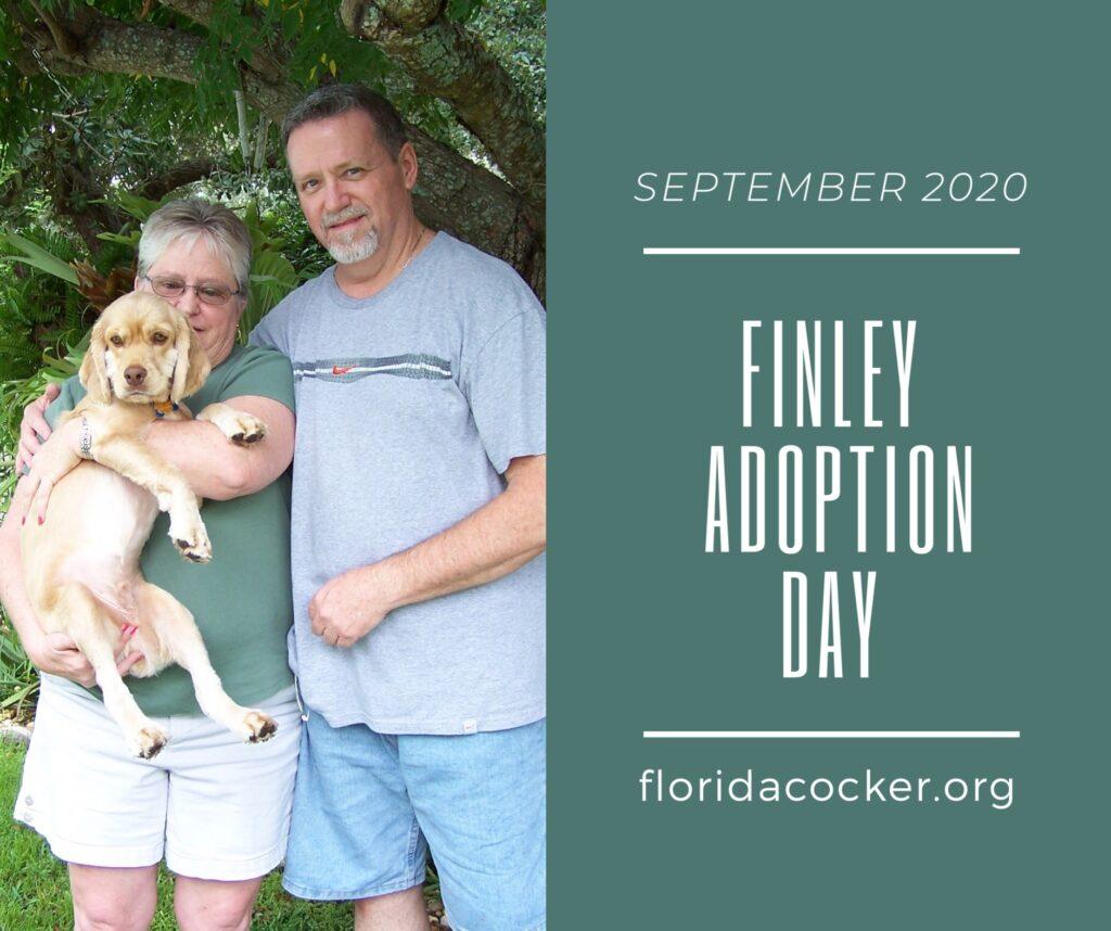 Finley Adopt