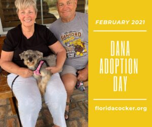 Dana Adopt