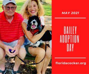 Bailey Adoption