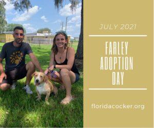 Farley Adopt